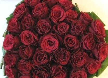 фотография бордовые розы в букете.