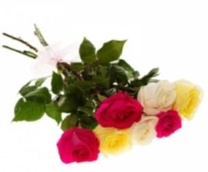 цветы до 1000 рублей в москве, букет из роз до 1000 рублей,