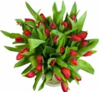 цветы до тысячи рублей в Москве