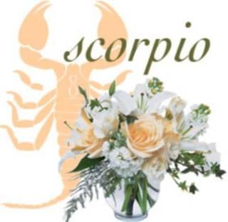 какой цветок по знаку зодиака, цветы по гороскопу для подарка