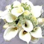 цветы на день рождения, букет из белых калл для сестры