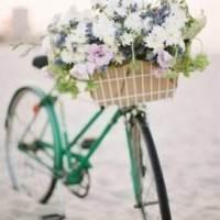 цветы на испанском языке, цветы на итальянском языке, цветы на латинице, цветы на португальском языке