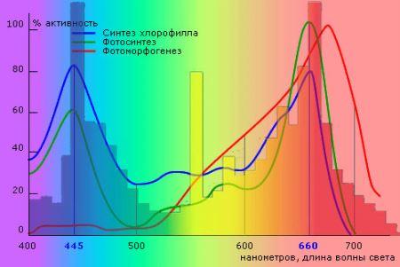 освещение, спектр света для растений