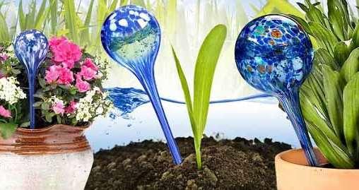 полив цветов во время отпуска, Aqua globes