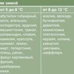 температура для комнатных растений зимой, температура для цветов зимой,